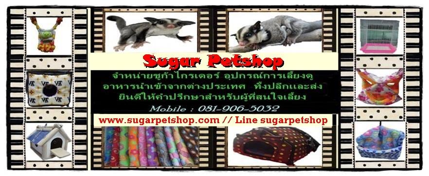 Sugar Petshop