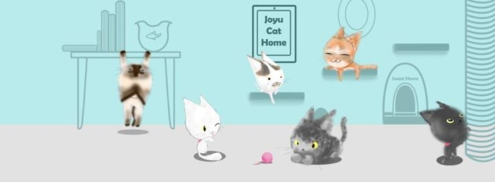 JoYu Cat Hotel