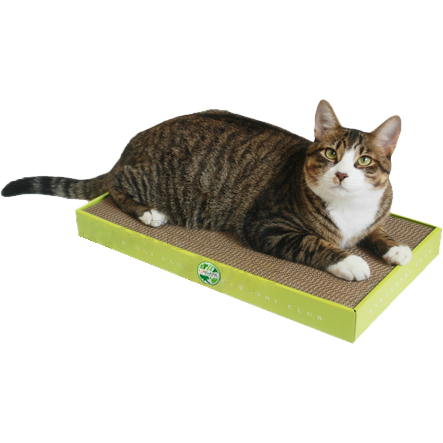 Cat Scratcher แผ่นฝนเล็บแมว+แคปนิปผง
