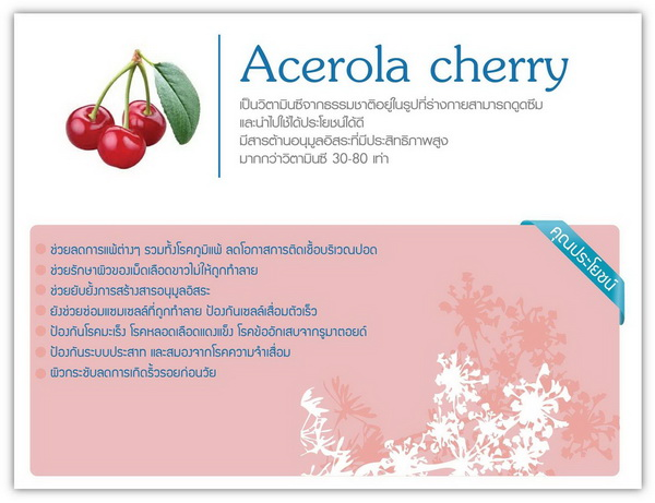 phyto-stemcell-Acerola Cheery