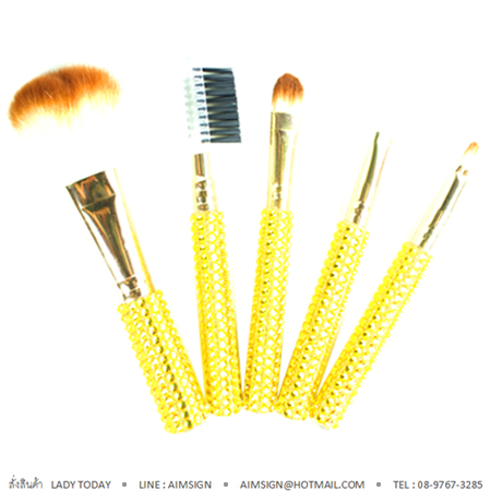 ASHLEY PREMIUM BRUSH 5 PCS. : YE