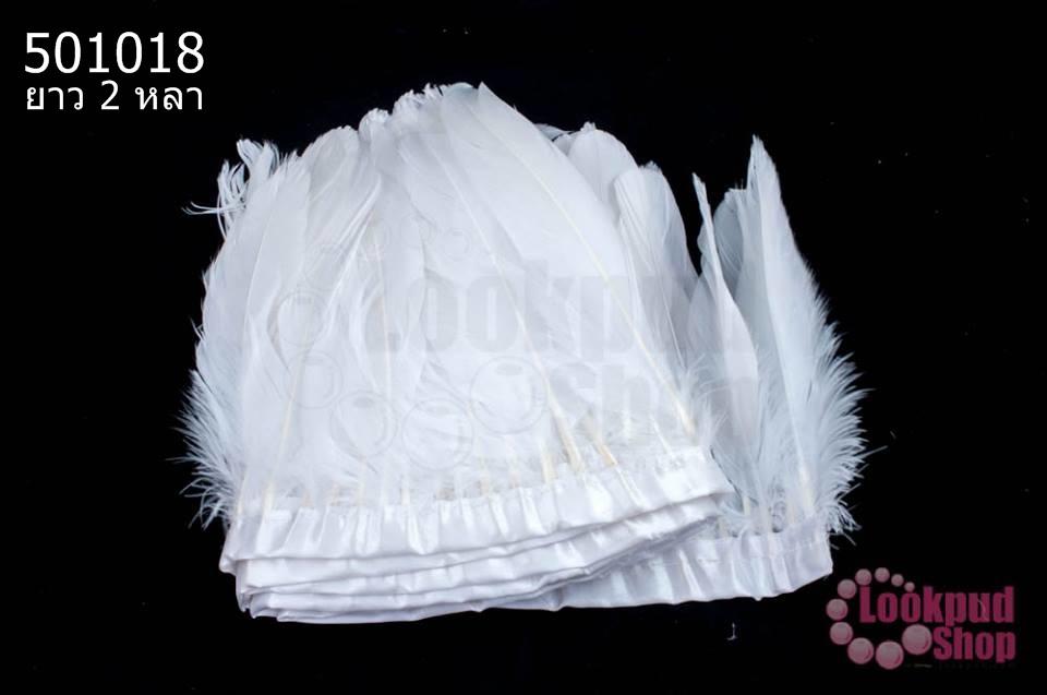 ขนนกมีริบบิ้น สีขาว ยาว 2 หลา (1ห่อ/220ก้าน)