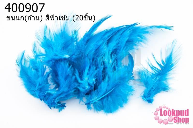 ขนนก(ก้าน) สีฟ้าเข้ม (20ชิ้น)