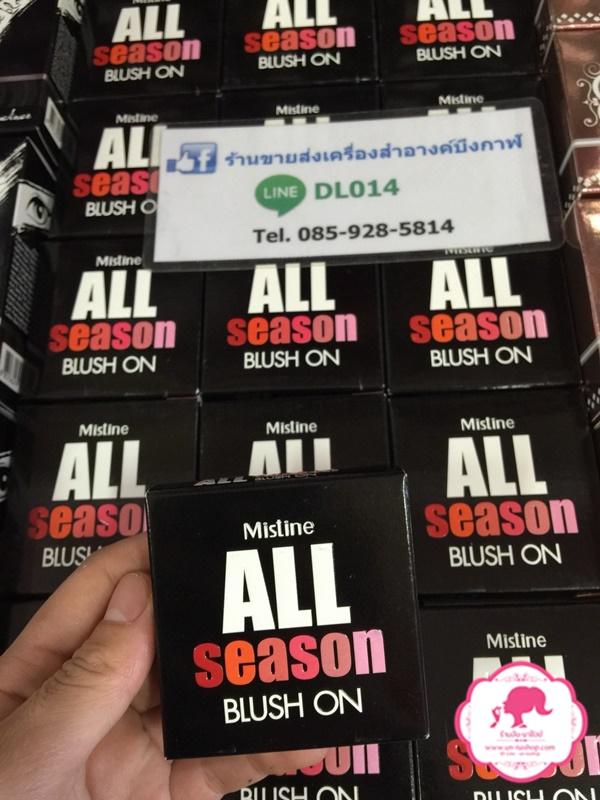 Mistine All Season Blush on มิสทีน ออล ซีซั่น บลัชออน