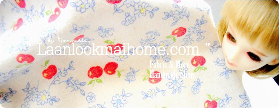 Laanlookmai Home ( Blue House)
