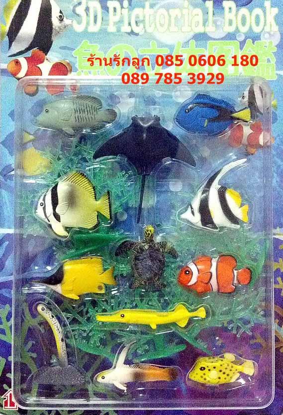 โมเดลสัตว์ปลาทะเล สีสันสดใส